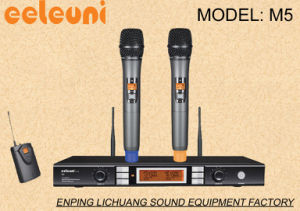 PRO Audio UHF&Pll Dual Channels Wireless Microphone