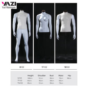 Female Bust and Male Mannequin Torso for Sports Garments pictures & photos