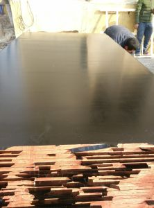 18mm Finger Joint Marine Plywood to Dubai pictures & photos