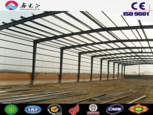 Steel Structure Shed (SSW-172) pictures & photos