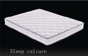 Spring Mattress of Home Furniture ((NL-205P) pictures & photos