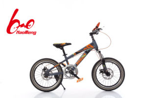Signal Speed Mountain Bicycle Within Damping pictures & photos