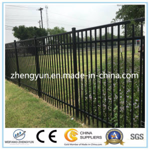 Ornamental Steel Fence Black Aluminium Fence Black pictures & photos