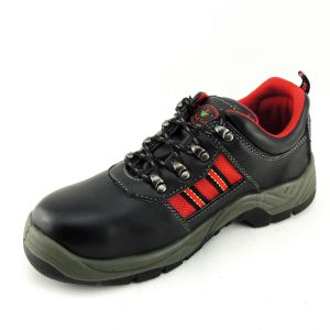 Suede Leather Upper Density Sole Steel Toe Cap Safety Shoes pictures & photos