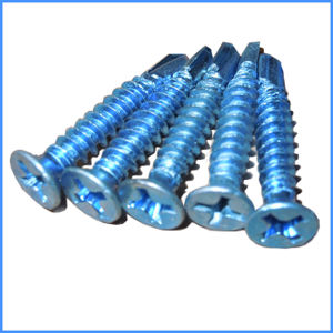 Self Drilling Screw From Guangzhou Supplier pictures & photos