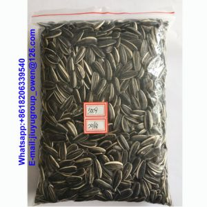 Inner Mongolia New Crop Sunflower Seeds pictures & photos
