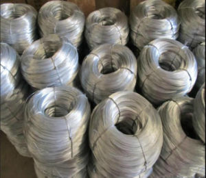 Galvanized Tie Wire/Bwg18 Gi Binding Wire to Malaysia, Singapore pictures & photos
