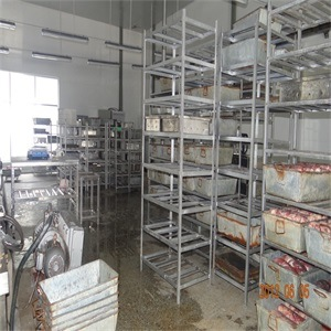 Cow Abattoir Equipment pictures & photos