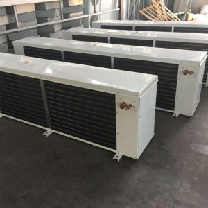 Hot Sale Ds-200 Air Cooler Fan for Cold Room/Air Cooled Evaporator/Factory Price pictures & photos