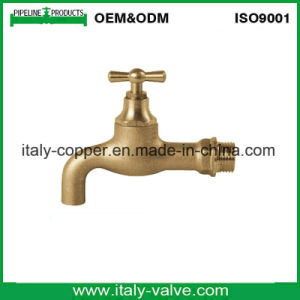 Ce Certified Brass Bibcock Tap (AV20021) pictures & photos