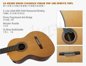 Good Quality Solid Classical Guitar with Low Price pictures & photos