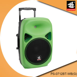 12 Inch Portable Battery Professional Active Multifunction Bluetooth Speaker pictures & photos
