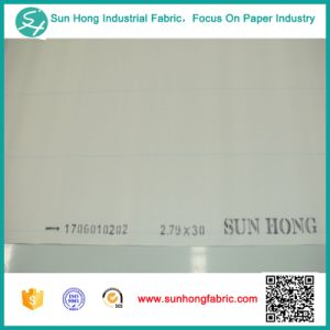 Single Layer Forming Fabric for Paper Mill pictures & photos