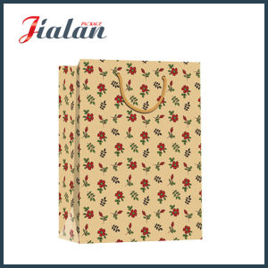 Brown Kraft Paper Leopard Printed Shopping Carrier Gift Paper Bag pictures & photos