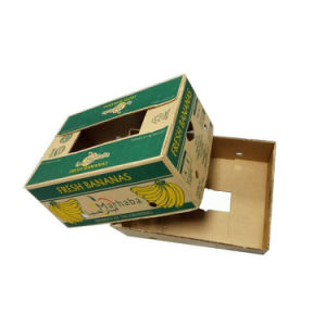 Luxury Custom Strong Fruit Shipping Carton Box pictures & photos