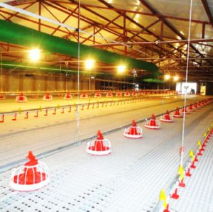 Customized Environment Control Poultry House with Feeding Machines pictures & photos