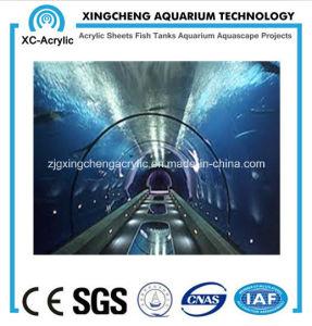 Long Aquarium Tunnel pictures & photos