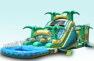 China Inflatable Manufacturer Giant Inflatable Combo with Slide B3083 pictures & photos