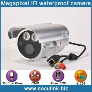 1.0 Megapixel IP Camera (IPC4100F-W)