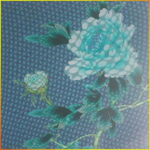 No Frame Plastic Composite 3D Panel for Ceiling / Wall Decorative pictures & photos