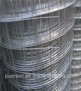 Low Price Hengshui Factory Welded Wire Mesh/ Galvanized Welded Wire Mesh/ PVC Coated Wire Mesh Fence pictures & photos