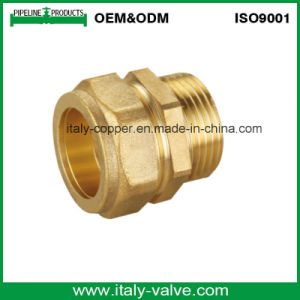 ISO9001 Certified Brass Forged Compression End Male Socket (AV7004) pictures & photos
