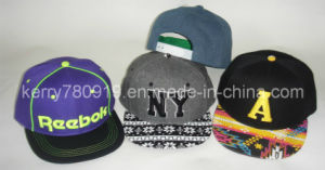 Customized Fashion New Snapback Era Cap Hat pictures & photos