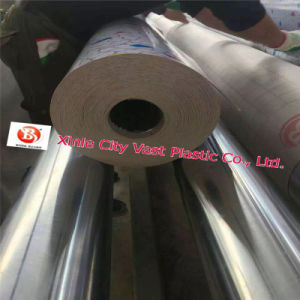 PVC Sheet Carpet Roll 3.3m Width pictures & photos