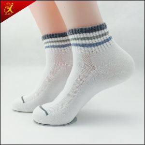 Popular Healthy Men Design Sock