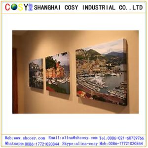 Lovely Home Decoration White Printing Canvas pictures & photos