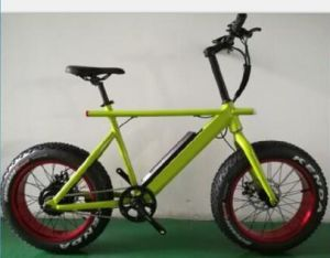 Electric Bicycle with lithium Battery pictures & photos