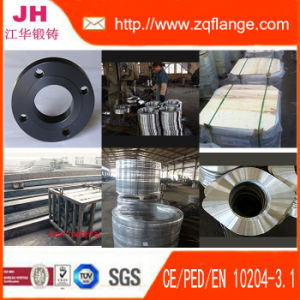 Forged Flange. Special Flange. Pipe Flange. pictures & photos