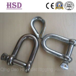 D Shackle, Thimble, E. Galvanized, Stainless Steel, European Large Dee Type, JIS D Type Shackle pictures & photos