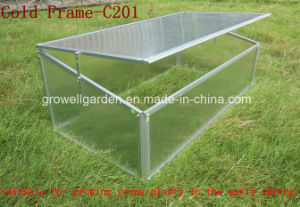 Cold Frame Greenhouse for Young Plants Growing (C201) pictures & photos