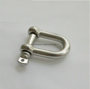 Stainless Steel G210 Straight D Shackle pictures & photos