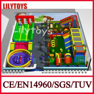 2015 New Outdoor Amusement Park Giant Inflatable Playground Equipment (Lilytoys-New-002) pictures & photos