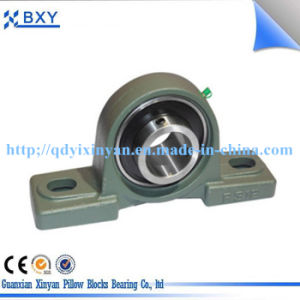 Pillow Block Bearing/Bearing Units UCP, Ucf, UCFL, Ucfc, UCT, Ucha, Ucpa pictures & photos