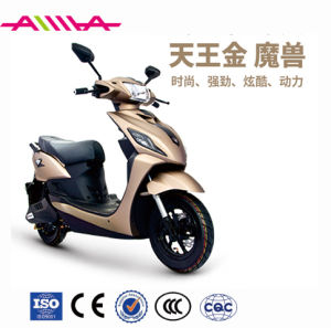 1200W Big Power Hydraulic Suspension Electric Motorcycle pictures & photos
