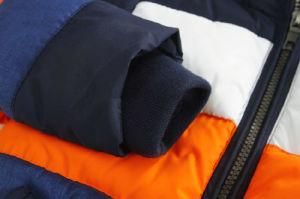 Striped Contrast Color Boy Jacket for Children Garment pictures & photos
