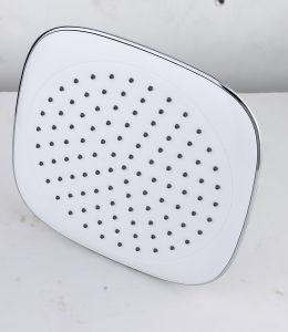 Ball Shower (HY-B73)