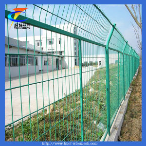 Galvanized Welded Wire Mesh Fence (Changte) pictures & photos