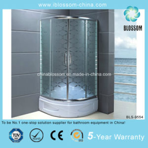 2014 China Manufacture New Pattern Shower Room (BLS-9554) pictures & photos