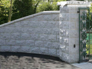 Grey Granite Tiles for Outdoor Walls (CS099) pictures & photos