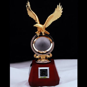 Customized Metal Trophy for Souvenir pictures & photos