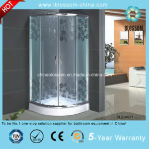 High Quality Acid Glass Simple Shower Room Shower Enclosure (BLS-9501) pictures & photos