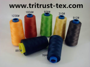 (2/20s) Spun-Polyester Sewing Thread pictures & photos