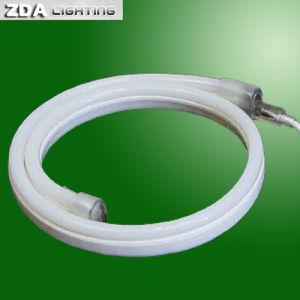 12V/24V/110V/220V Flexible LED Neon