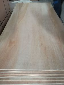 18mm Meranti Plywood Poplar Core E1 Glue BB/CC Grade pictures & photos