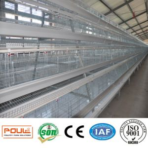 Automatic Battery Layer Chicken Cage Poultry Equipment pictures & photos