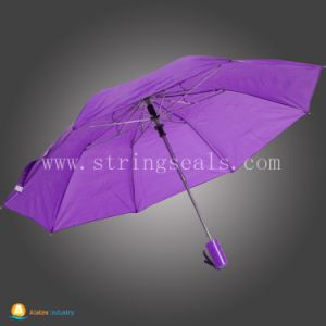 Hot Sell 2 Folding Auto Open Umbrella pictures & photos